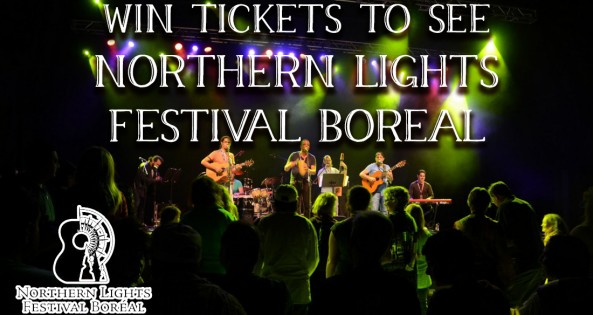 Northern lights festival boreal graphic