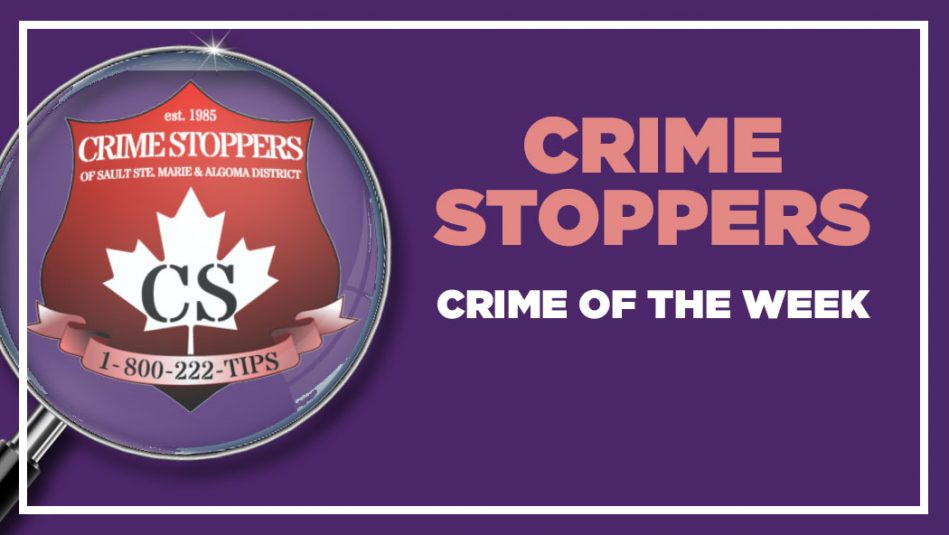 Crime Stoppers Crime of the Week